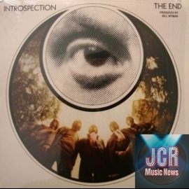 Introspection (Vinyl)