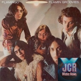 Flamingo (Vinyl)