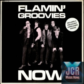 Flamin' Groovies Now!